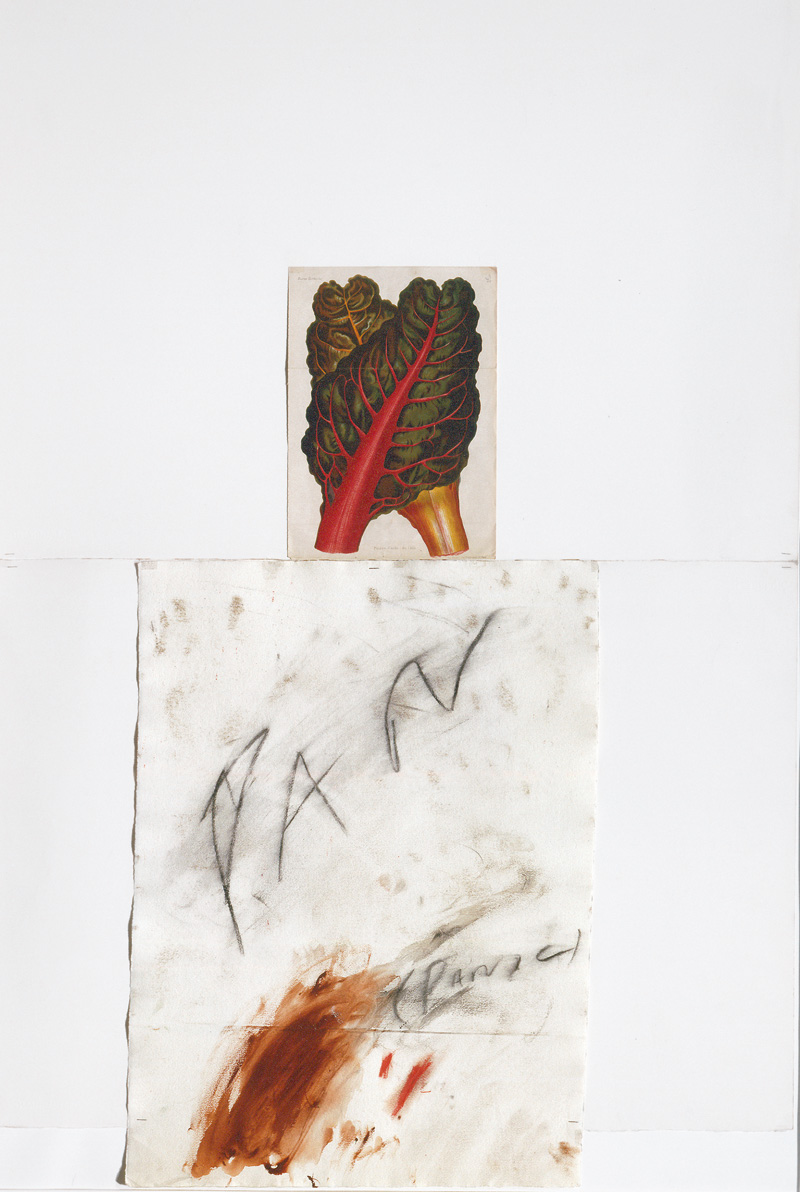 cytwombly16